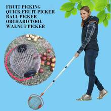 Walnuts Chestnuts Harvester Roller Nut Collector Retractable Aluminum Alloy Ball Garden Quick Fruit Picker Home Orchards Tool(China)