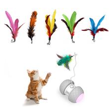 5 sztuk wymiana kolorowe piórka na elektroniczny zwierzak interaktywne zabawki dla kota automatyczne wykrywanie przeszkód koła elektryczny kij kota tanie tanio Other cats FEATHER Feather for cat toy 18cm 24cm
