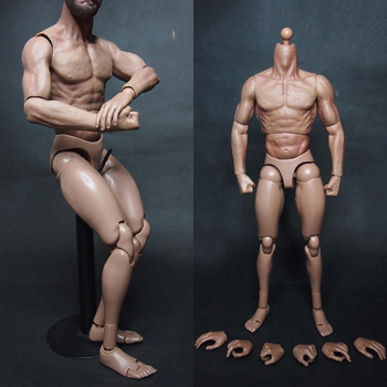 1/6 Scale Male Body Military Chest Muscular Similar To TTM19 For Head Sculpt