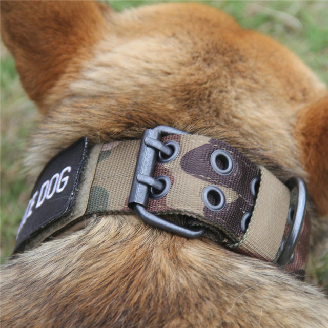 Adjustable Tactical Nylon Military Dog Collar with Metal Buckle