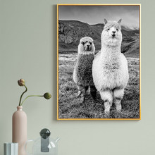 Llama Black and White Animal Canvas Painting Alpaca Posters and Prints Wall Art Picture for Kids Room Home Decoration Cuadros