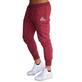2020 spring and summer new fashion thin trousers men's casual pants jogging bodybuilding fitness perspiration limited time sport - M, Burgundy