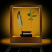Lightweight Object Slow Motion Frame LED Optical Illusion Sculpture Slows Down Time Action Picture Frame Desktop Home Decoration