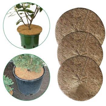 10 sztuk rośliny pokrywa roślina doniczkowa s ochrona zimowa kokosowa ściółka pokrywa wycieraczka kokosowa do ogrodu roślina doniczkowa botanika utrzymać ciepło 3 rozmiar tanie i dobre opinie Other