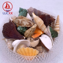 LUCKK Mediterranean Style Lot Of Funny Mixed Natural Sea Shell Conch Wall Home Decor Beach DIY Nautical Craft Marine Accessories