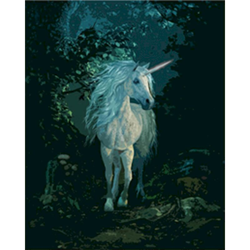 Painting By Numbers Beautiful unicorn DIY animals Hand Oil Painting Unique Gift For Children adults By Kits Home Decoration-0