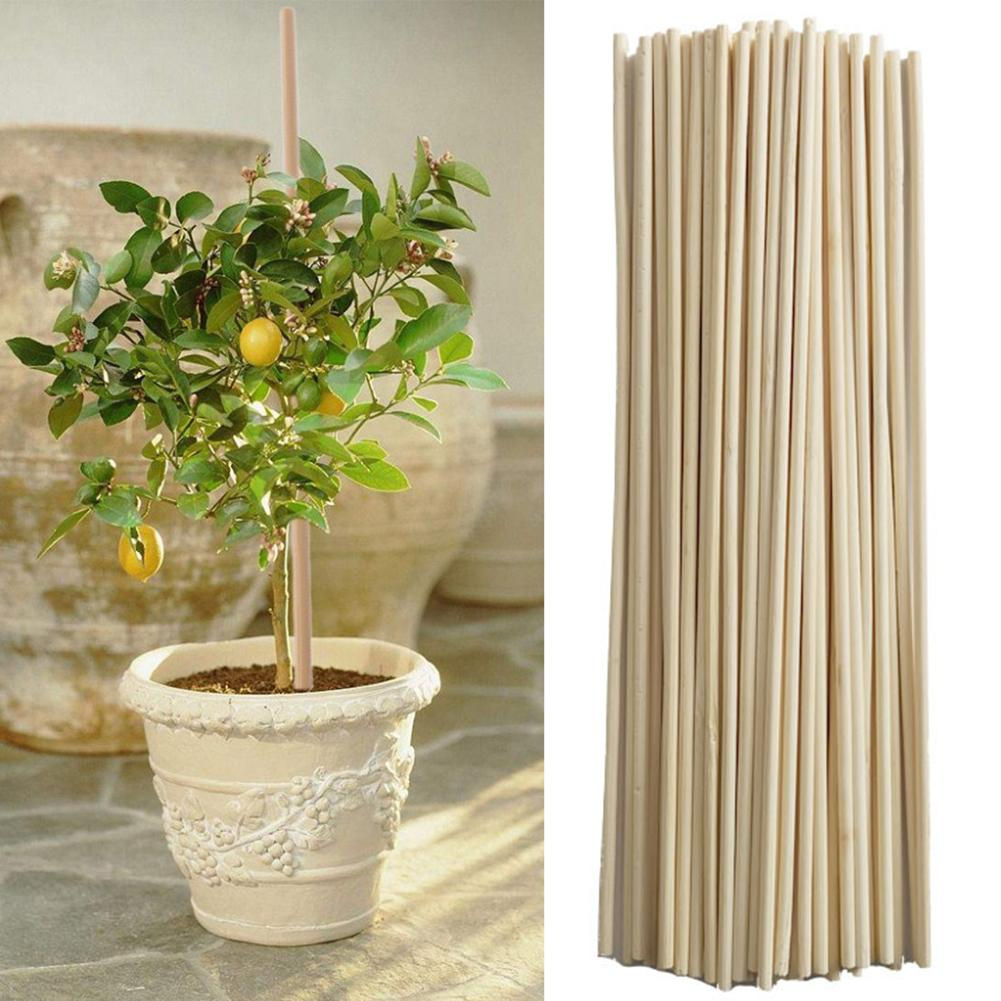 50Pcs Bamboo Plant Grow Support Sticks Garden Potted Flower Canes Rod Tools