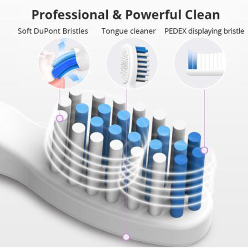Seago 5gear Ultra Sonic Electric Toothbrush Tooth Brush USB Rechargeable Adult IPX7 Waterproof Ultrasonic Automatic Smart Timer
