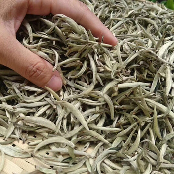 150g White Tea Chinese Bai Hao Yin Zhen White Tea Silver Needle Tea For Weight Loose Tea Natural Org
