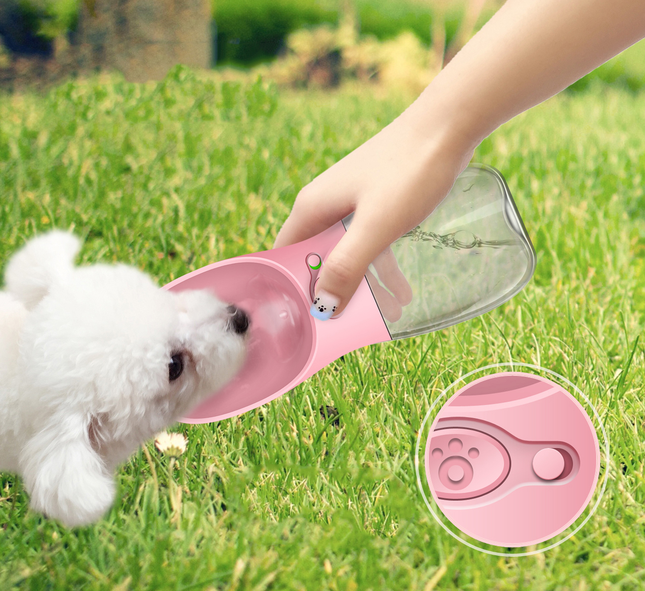 dog water carrier