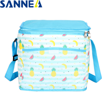 Waterproof Insulated SANNE Bag Cooler-Bag Thermal-Ice-Pack Food Portable for 16L/9.5L