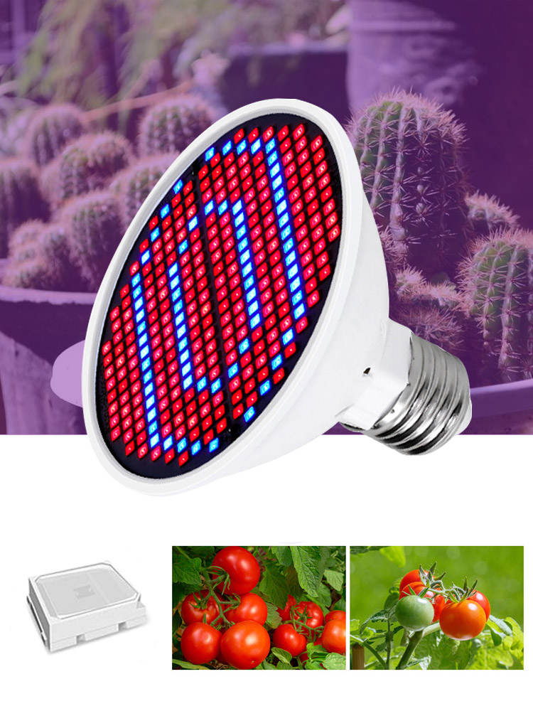 Led Grow Lights-Lamp Indoor-Lighting Hydroponic Full-Spectrum