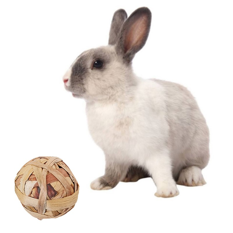 Pet Chewing Toy Natural Aquatic Plant Grass Braided Ball Bunny Hamster Small Pet Chewing Toy Parrot Feet Standing Toys Y Toys Aliexpress