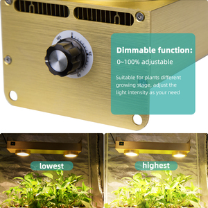 Image 4 - Dimmable Cree CXB3590 COB LED Grow Light Full Spectrum 200W LED Grow Lamp With Timer For Indoor Greenhouse Hydroponic Plant Tent