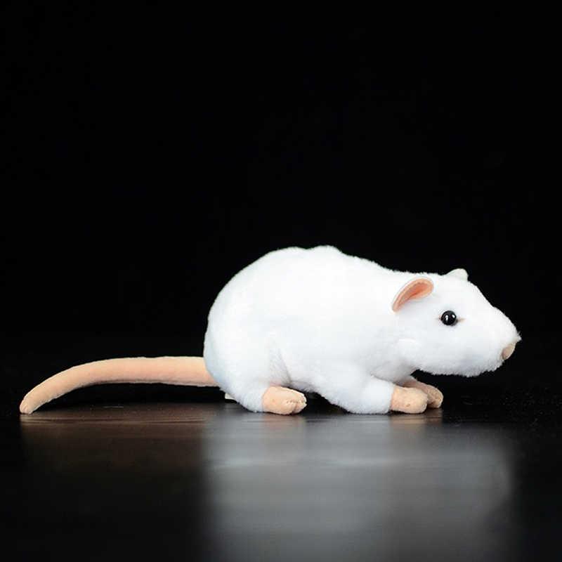 Maskottchen im Jahr der Ratten Fette Ratte 2020 Neues Jahr Anhänger der Maus