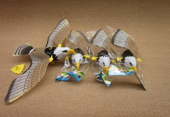 Flying Bird Bridle Bird Eagle Barking Model Can Fly Shining Sound Making Electric Dropped Eagle Below 14-year-old 1