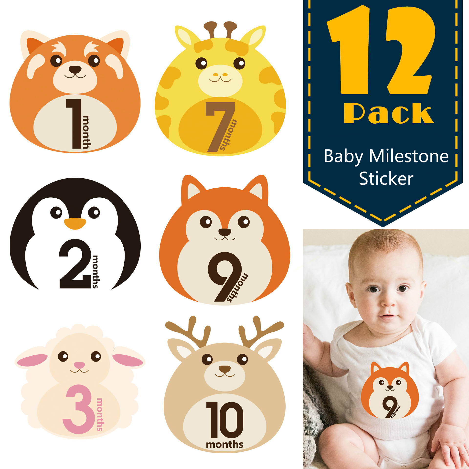 New Cartoon Animal Baby Monthly Photograph Stickers 12Pcs/set Newborn DIY Scrapbook Album Photo Prop For 0-12 Month Toddler Baby