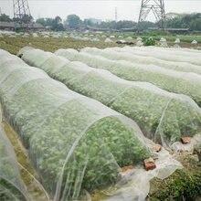 Ogrodowa sieć na owady warzywne pokrywa roślina ochrona kwiatów sieć ochrona przed owadami ochrona przed szkodnikami siatka 6/10M długości