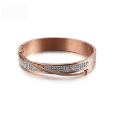 Luxury argil lovers titanium steel bangles fashion jewelry female accessories 3 color bangle bracelet wristlet jewel women gifts