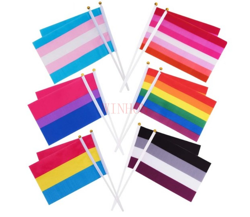 Leather Rainbow LGBTQ Gay Pride Edged Small Hand Waving Flag