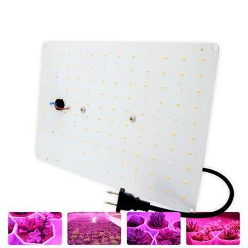 Lampa LED do hodowli roślin 500W wodoodporna 100 Full Spectrum 20 czerwona lampa koralik wzrost lampa oświetlenie roślin akcesoria ogrodowe AC85-265V tanie i dobre opinie oobest CN (pochodzenie) NONE dropship
