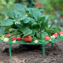 Flower-Climbing Strawberry-Stand-Frame-Holder Planting-Rack Fruit-Support Vine-Pillar