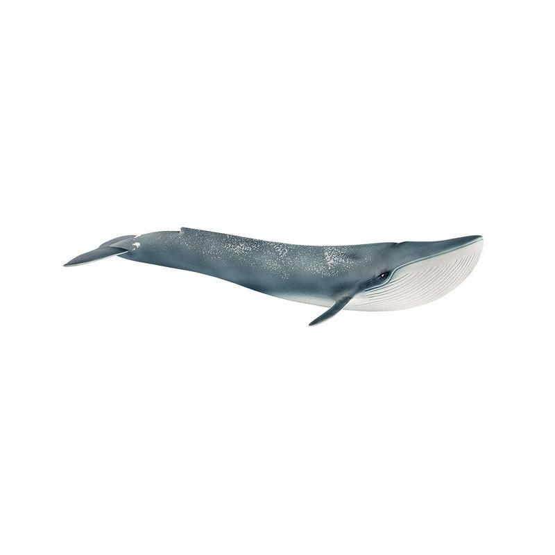 Blue Whale Toy Store Articles Created Handbook