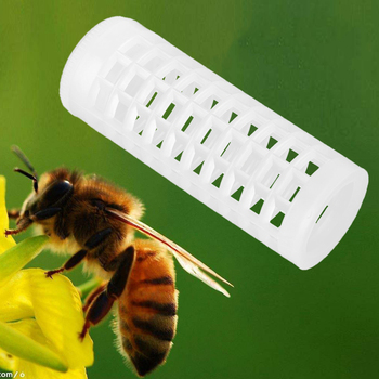 New Beekeeping Equipment Queen Rearing Box Queen Rearing System Beekeeper Supplies Hive Tool Set
