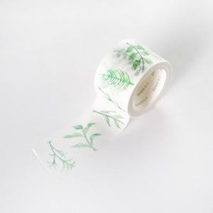 Green Leaves Cactus Bullet Dia