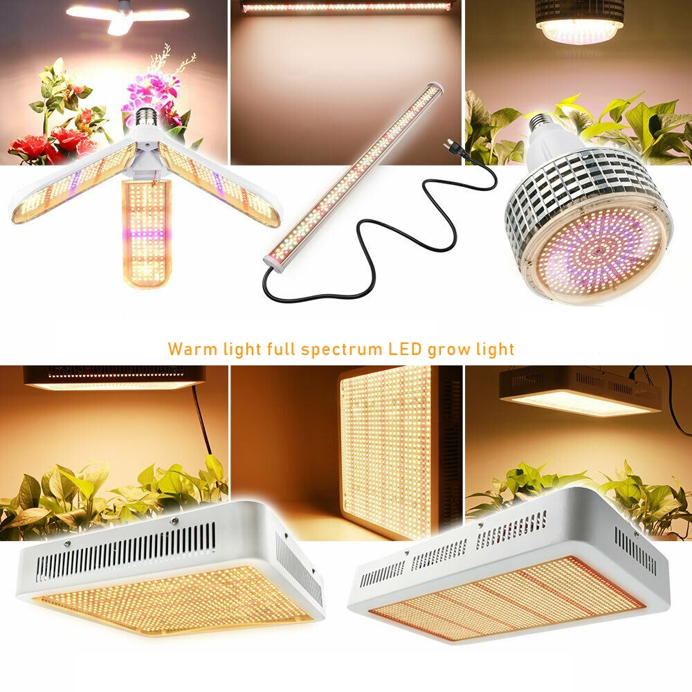 100W 300W 500W LED Grow Light Full Spectrum Warm White Led Lamp For Plants Flowers Vegs Indoor Growing Tent Greenhouse