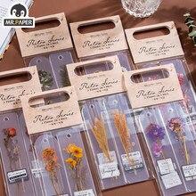 Mr. papel 8 projetos 20 pçs/saco planta estilo uma flor uma frase série mão conta decoração colagem diy material adesivos