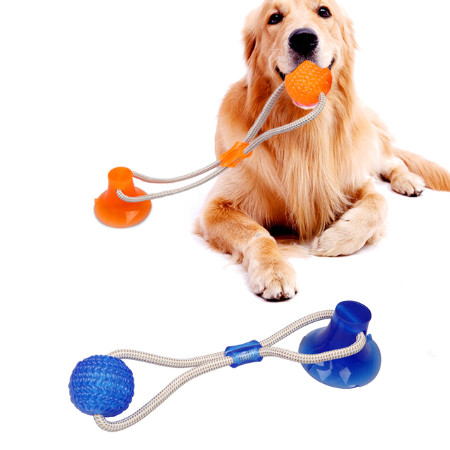 Pet Toys with Suction Cup Dog Push Toy with TPR Ball Pet Tooth Cleaning Chewing Rubber Dog Toys for Small Dogs Rubber Dog Toy 2