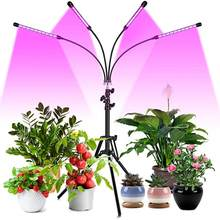 US/EU Plant Growth Light With Full Spectrum Bracket Timer 3 Modes 6 Brightness Plant Growth Light Suitable For Indoor Plants(China)