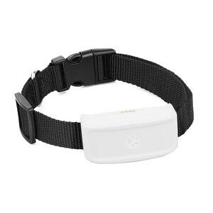 Image 4 - Original TKSTAR  TK911 TK909 Global Locator Real Time Pet GPS Tracker For Pet Dog/Cat GPS Collar Tracking Free Platform