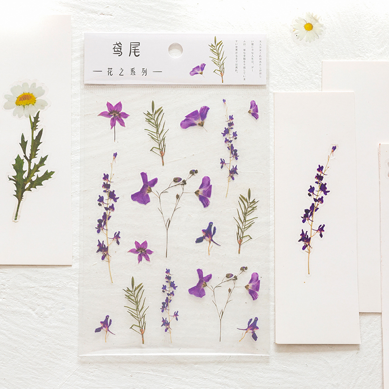 Journamm 12 Designs Natural Daisy Clover Japanese Words Stickers Transparent PET Material Flowers Leaves Plants Deco Stickers 6