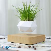 Flower Pot Decoration Creative Green Plants Magnetic Levitation Potted Aerial Potted Hanging Flower Pot Living Room Office Gift