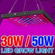 Лампа светодиодная полного спектра для выращивания растений