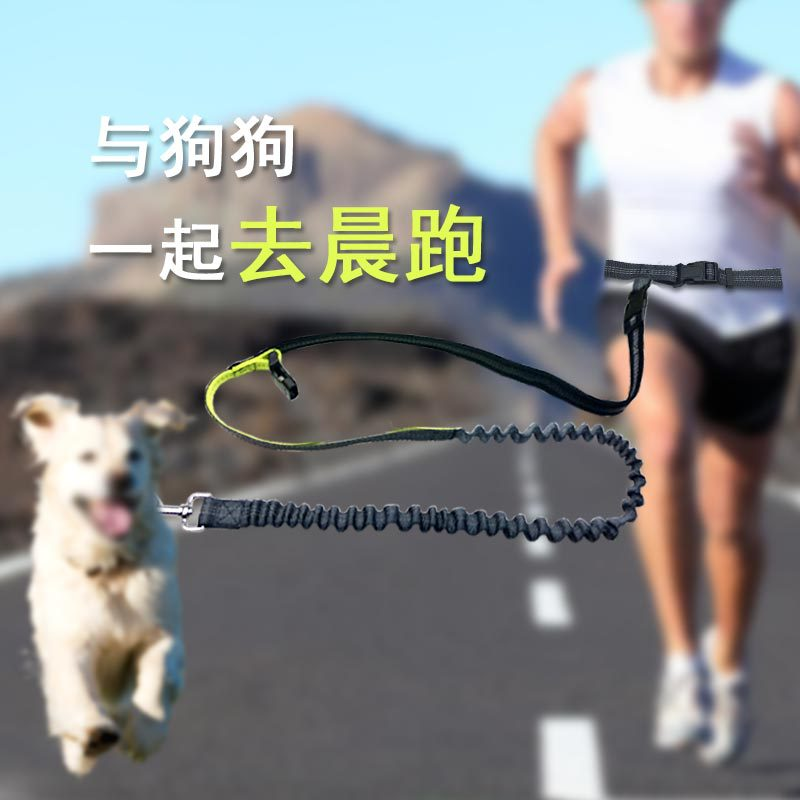 Pet Supplies Waterproof Waist Bag Sports Running Hand Holding Rope Multi-functional Traction Belt Dog Traction