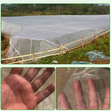 large garden crop plant protection net netting bird net pest insect animal vegetable care big mesh nets Mult-Size New Bug Insect Bird Net Barrier Vegetable Fruit Flowers Plant Protection Greenhouse Garden Netting