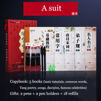 5 Books 3D Chinese Characters Reusable Groove Calligraphy Copybook Erasable pen Learn hanzi Adults Art writing books