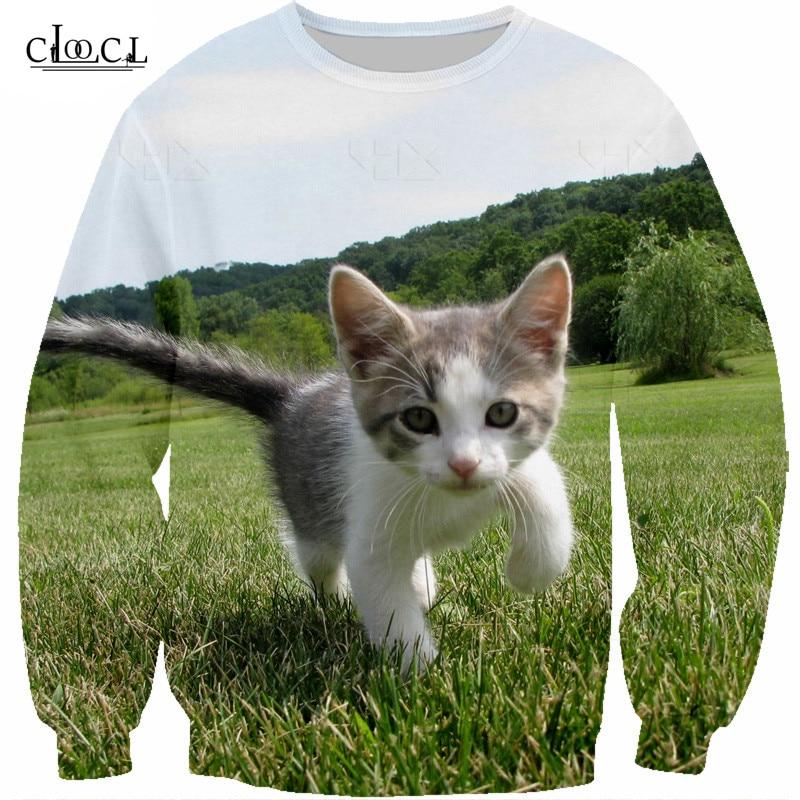 cat hoodie animal Tshirt men sweatshirt (3)
