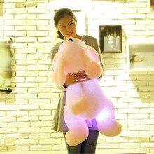 Colorful Luminous teddy dog LED Light Plush Pillow