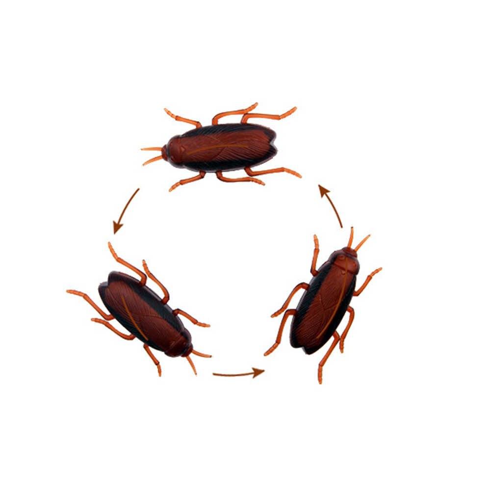Картинка таракан бегает