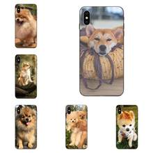 Shibainu Dog For Huawei Mate 9 10 20 P8 P9 P10 P20 P30 Lite Mini Play Pro P smart Plus Z 2017 2019 New Case Black Phone(China)