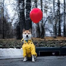 Cão de estimação quatro estações à prova de vento e à prova de chuva capa de chuva cão jaqueta de estimação casaco francês bulldog médio e grande roupas para cães
