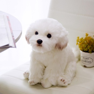 Image 3 - חדש באיכות גבוהה סימולציה מלטזית כלב בפלאש צעצוע רך קריקטורה בעלי החיים כלב ממולא בובת עיצוב הבית תינוק ילד מתנת יום הולדת