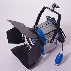 PRO 300W Fresnel Tungsten Light 300 watts + bulb for photo film studio lighting