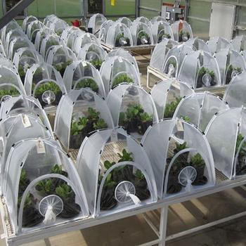 Cobertizo de aislamiento de plantas multifuncionales, Invernadero de jardín plegable, Mini Invernadero...