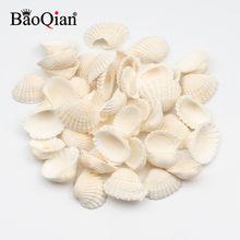 30 pçs 20-30mm concha de mar natural coquillage praia decoração de estilo marinho conchas de neve enfeite diy decoração de casa