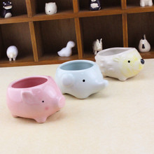 Flower Pot Cartoon Fleshy Ceramic Plant  Desktop Animal Creative Planters for Succulents Pots